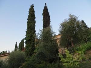 Gardasee 2013 - 1